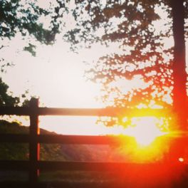 7-11 sunset