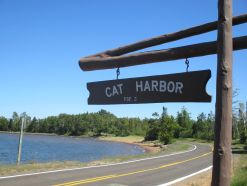cat harbor